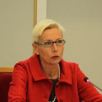Gudrun Grosse-Wiesmann, aus dem BMZ, beim Vortrag