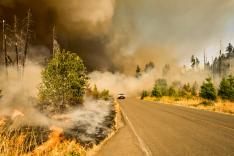 Auf einer von teils verbrannten Bäumen gesäumten Landstraße fährt ein Geländewagen; hinter ihm ragt eine Rauch- oder Staubsäule auf.