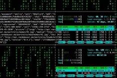 Das Bild zeigt Datenkolonnen auf einem Computerbildschirm.