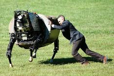 Ein Mann versucht, einen vierbeinigen Roboter seitlich umzuwerfen.