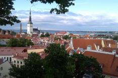 Man sieht die roten Dächer einer Stadt, von oben fotografiert